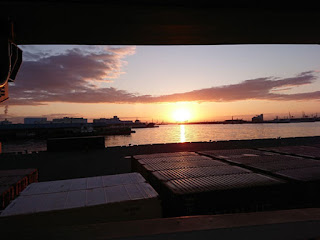 神戸大橋の朝日