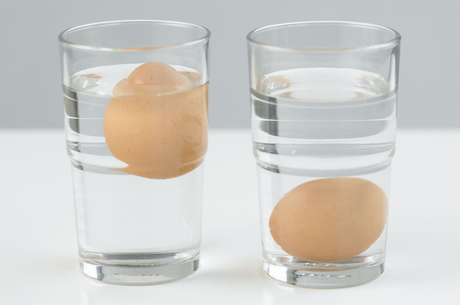 Kenali Ciri Ciri Telur Yang Tidak Baik Agar Tidak Salah