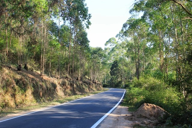 Road Condition of Munnar, Condition of roads - cochin - munnar , Munnar Route current condition from Ernakullam, Munnar best route and route update
