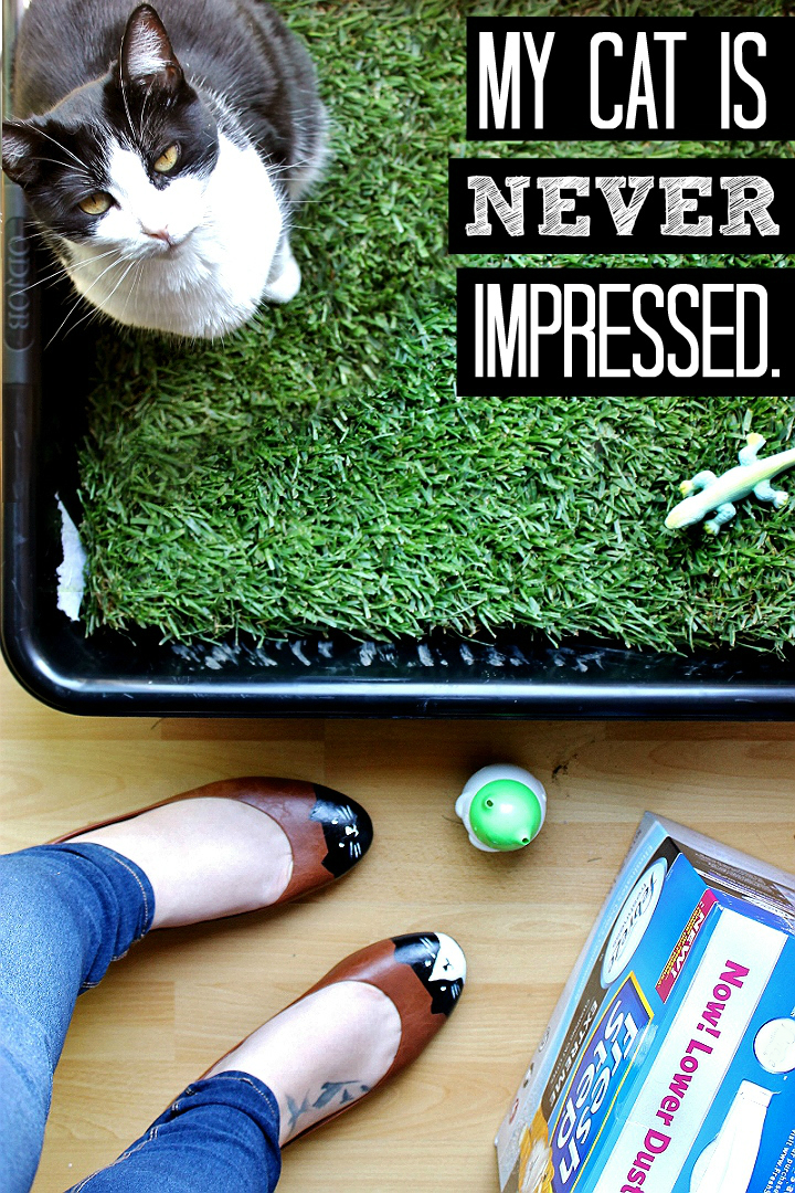 Even when I make cat-toe flats and provide her with a real grass indoor lounge.
