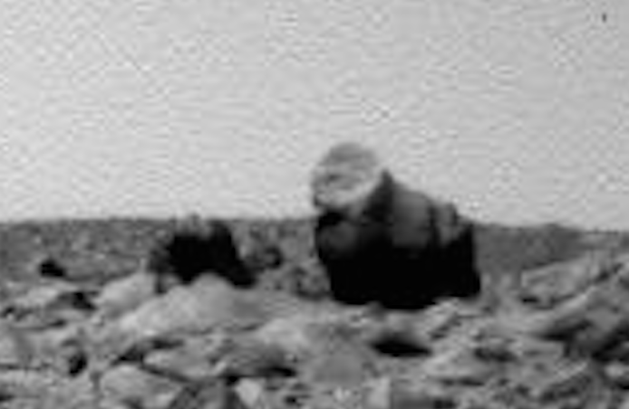 mars rover creature - photo #22