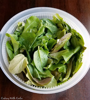leaf lettuce in salad spinner