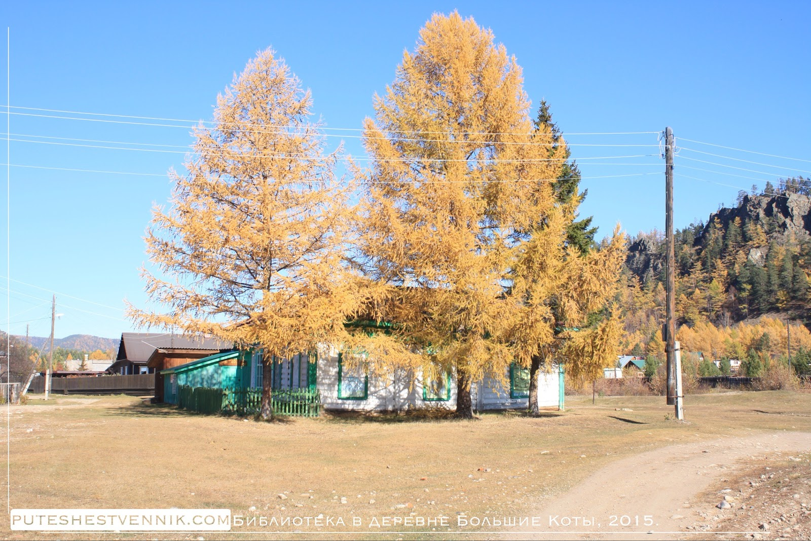 Дом и осенняя лиственница