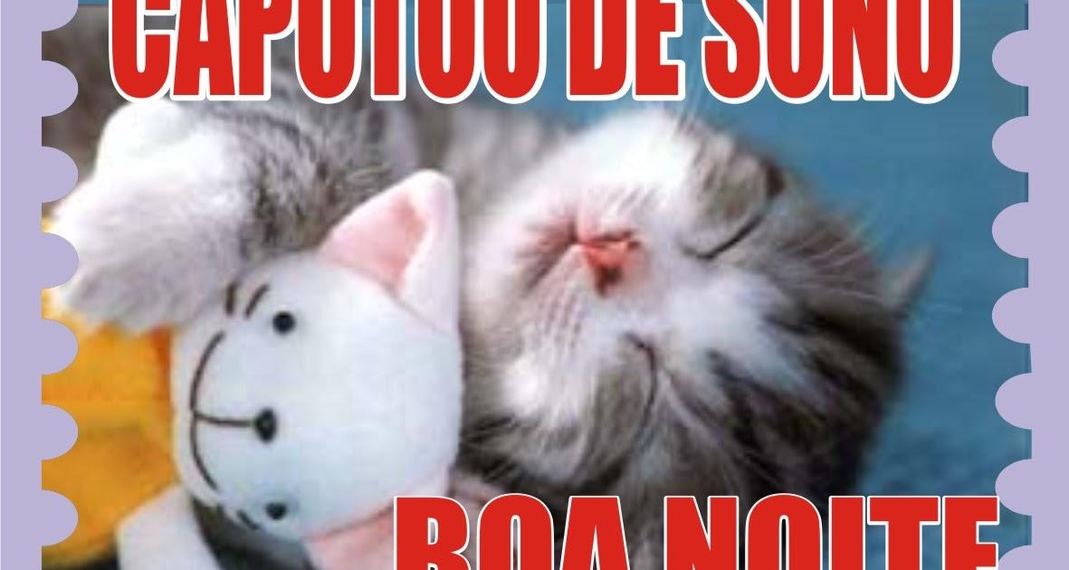 Chambolinho Recadinho De Boa Noite Pra Facebook: Boa Noite Pra Facebook Gatinho Fofinho