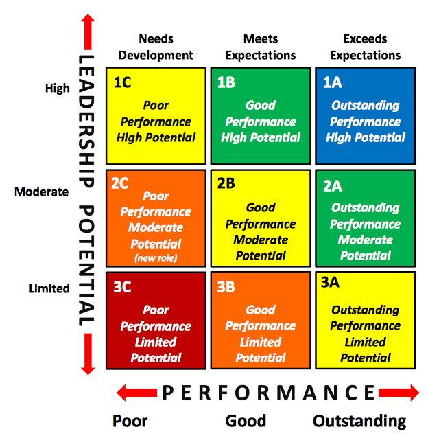 9 Box Grid - Leadership Potential vs Performance