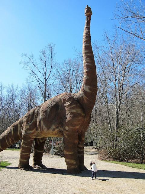 dinosaur place montville connecticut brachiosaurus