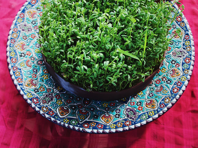 Nowruz-Persian New Year