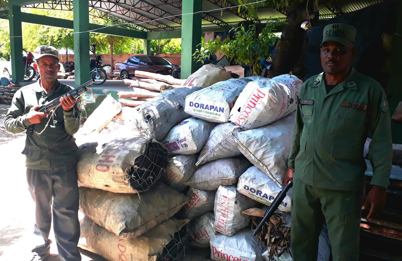 Medio Ambiente decomisa 60 Sacos de Carbón Vegetal, destruye hornos y apresa 10 Nacionales Haitianos en Barahona