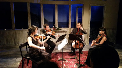 Soulful Music with the Iris String Quartet