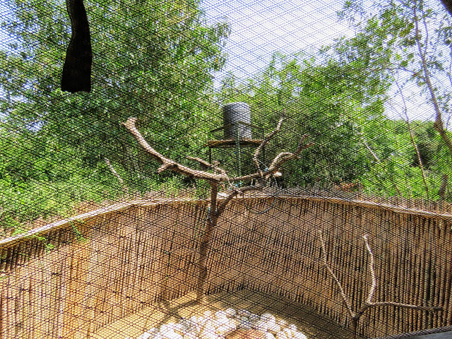 Outdoor shower at Bush Lodge in Uganda