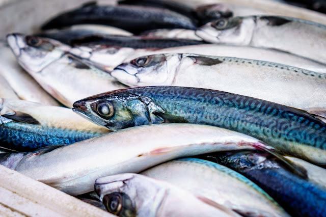Cara menghilangkan bau amis ikan dengan mudah