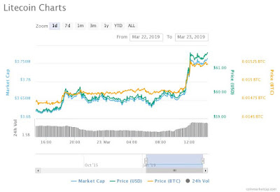 Litecoin emerged as winners in the recent market surge