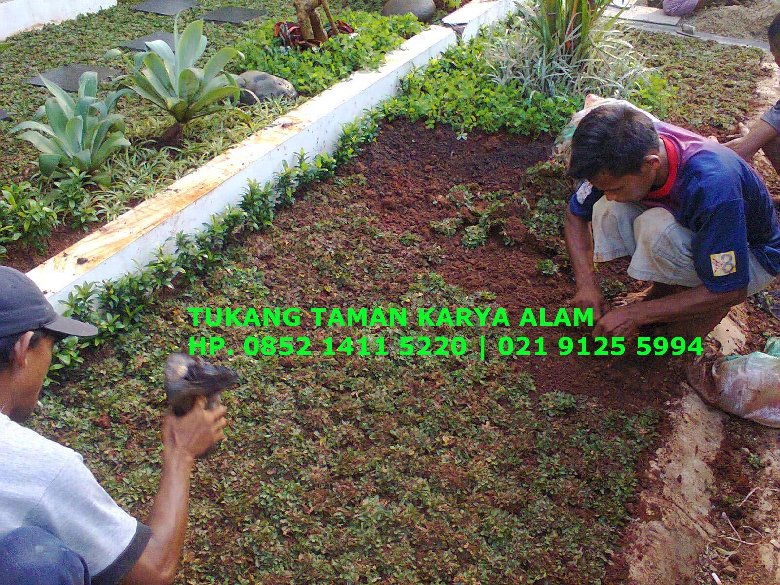 http://tukangtamankaryaalam.blogspot.com/2014/10/tukang-taman-jasa-pembuatan-renovasi-taman.html