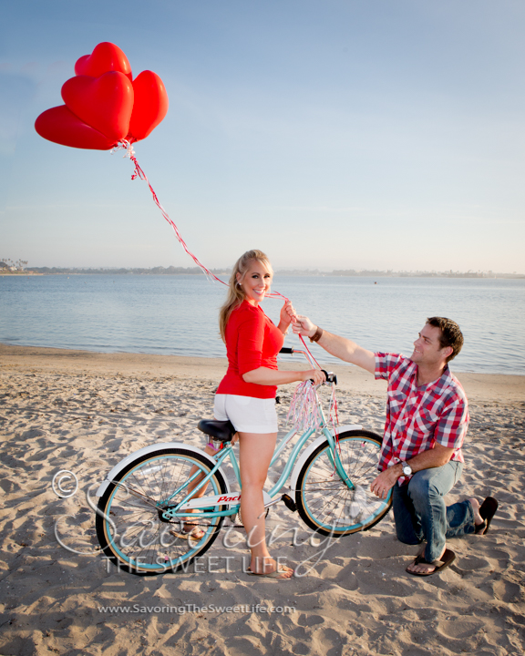 The Engagement of Monica & Michael: San Diego Wedding and ...