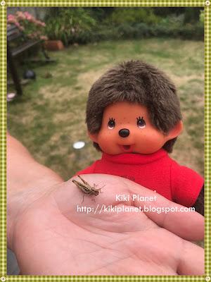 kiki monchhichi jardin poupée toyslife criquet nature dolls