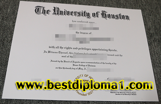 Houston University degree