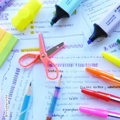 Material escolar. ¿Qué llevo en mi estuche para la escuela o Universidad?  (por Nica Bernita)