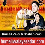 http://www.humaliwalayazadar.com/2016/10/kumail-zaidi-aonlavi-shahab-zaidi.html