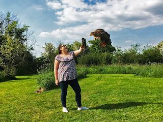 Barn Owl Centre Review Owl Flying Bristol Gloucester