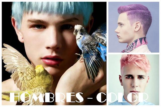 pelo color 2017 hombres