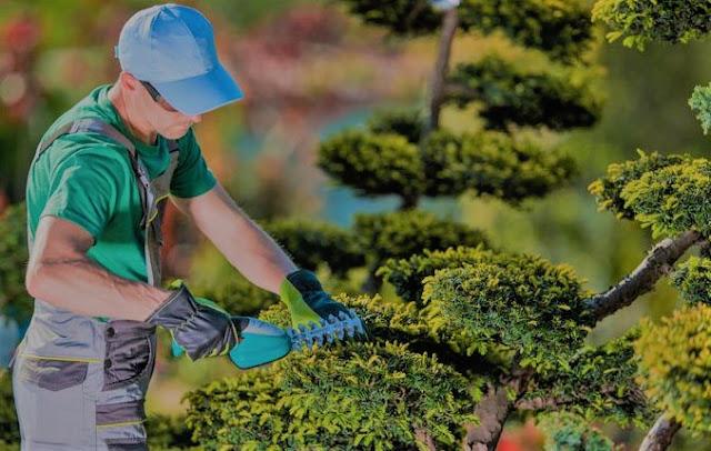 Ejemplos de Evaluación de Riesgos Laborales   Operario de Jardineria + Maquinista en Artes Gráficas    Prevención de Riesgos Laborales