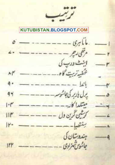 Contents of Namwar Jasoos Auratain e-book