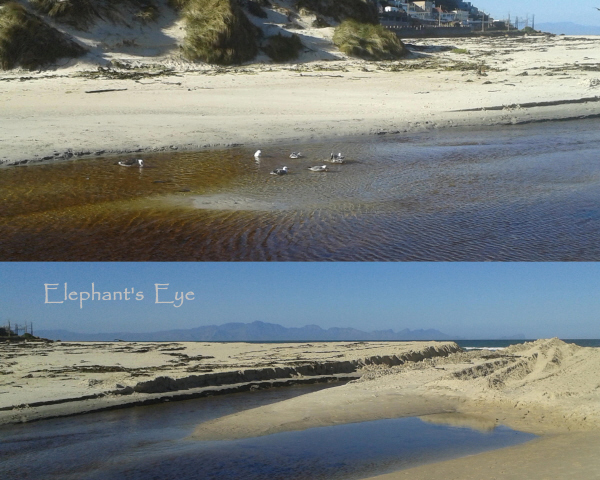 Silvermine River with the mouth bulldozed open