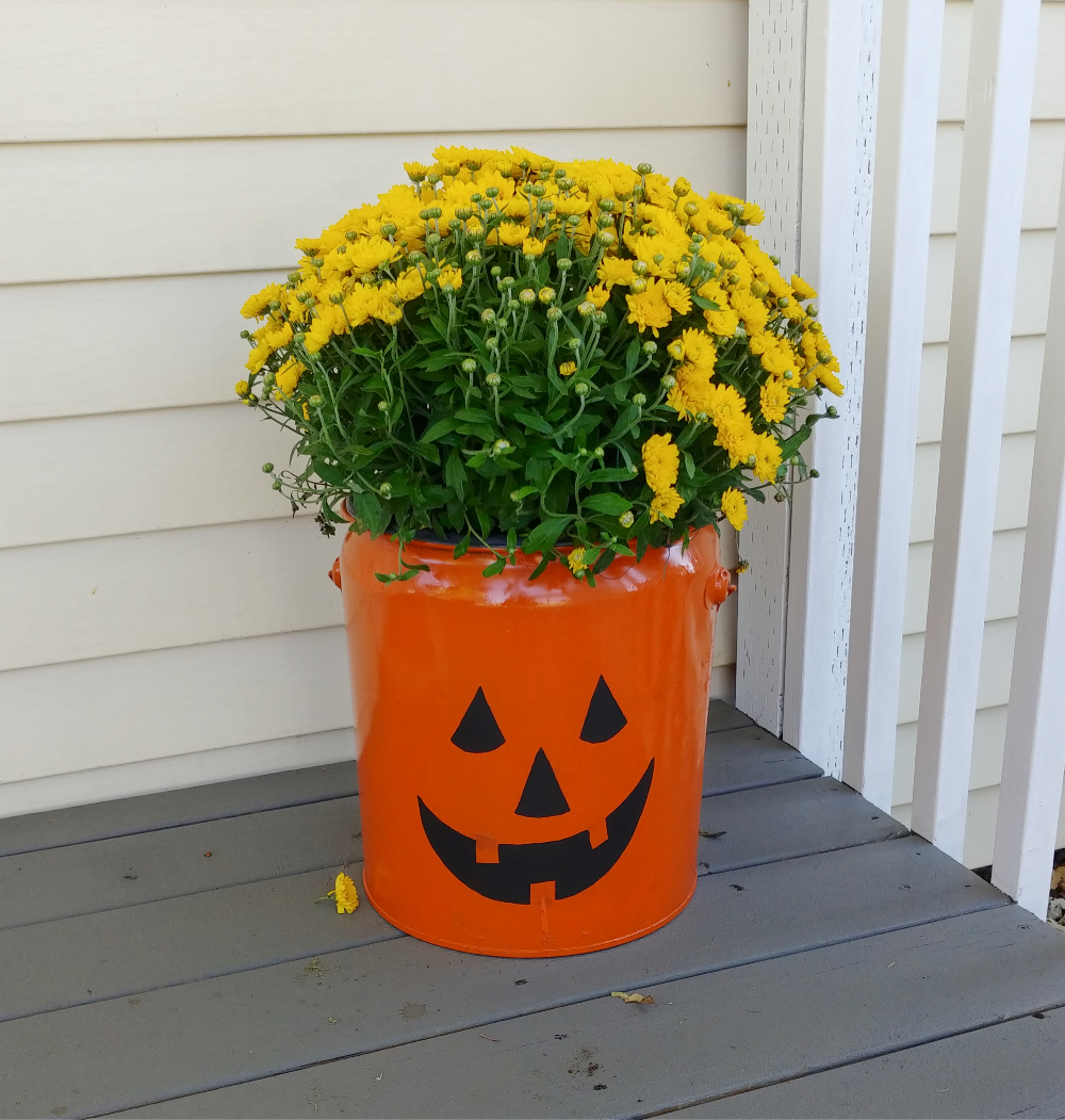jack-o-lantern bucket with yellow mums
