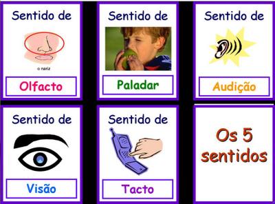 Educa o em alto grau novas atividades rg os dos for Mural de los 5 sentidos