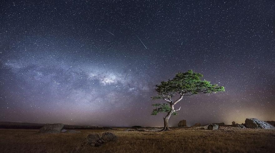 starry Night Sky-12