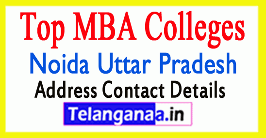 Top MBA Colleges in Noida Uttar Pradesh