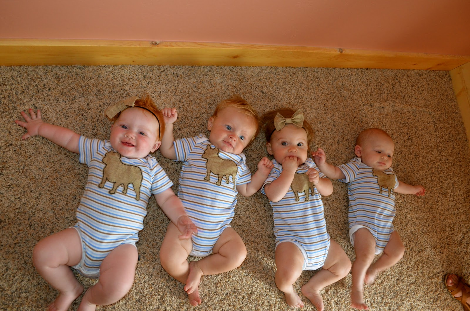 If I Had Quadruplets