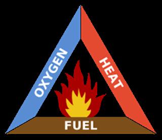 unsur kebakaran hutan