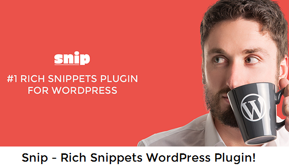 Download Snip 2.3.0 WordPress Plugin