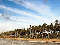 Pesona Pantai Kijing Kalimantan Barat