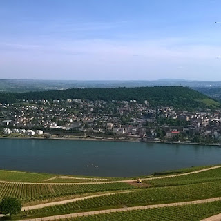 From the tiny town of Oestrich-Winkel, Brian could walk through vineyards along the mighty Rhine and take in vistas of neighboring communities, like Rüdesheim (pictured). (Photo courtesy of Brian Peterson)