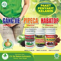 Cara Mengobati Sipilis dengan Bawang Putih Tanpa Resep Dokter, cara mengobati sipilis tanpa obat dengan daun sirih
