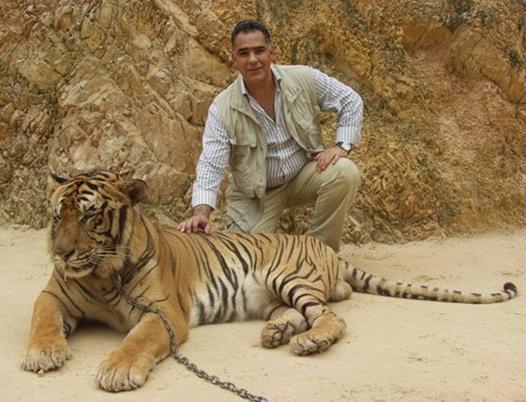 Les tigres 14-02-2021004