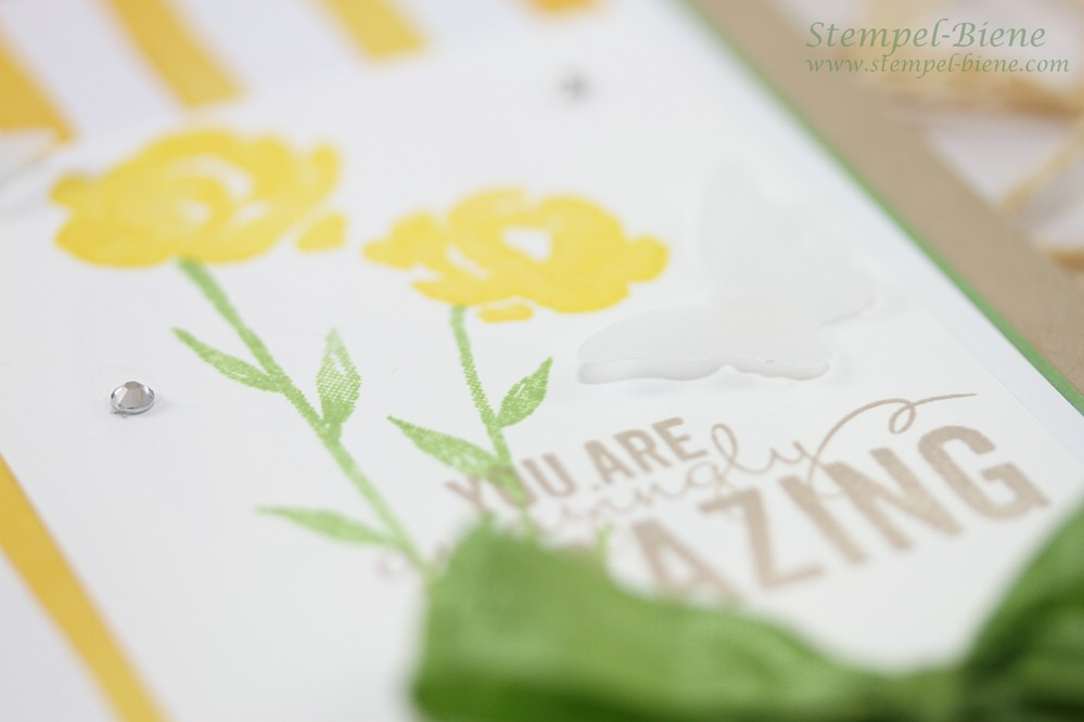 Stampin Up Painted Petals, Grußkarte Stampin Up, Stampin Up Jahreskatalog 2015-2016, Stampin Up neuer Katalog, Match the Sketch, Stempel-Biene, Stampin up Auslaufliste 2015