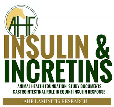 Animal Health Foundation: AHF-funded laminitis research proves role of the equine gastrointestinal system in high insulin levels and laminitis risk