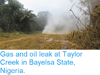 https://sciencythoughts.blogspot.com/2013/07/gas-and-oil-leak-at-taylor-creek-in.html