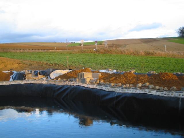 teichwasser klar halten