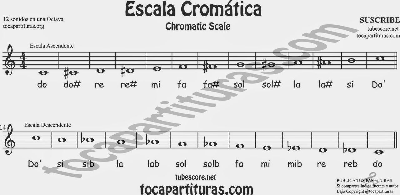 Escala cromática en clave de sol partitura en una octava con el nombre de las notas treble clef chromatic scale