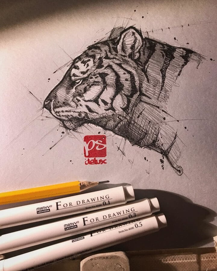 11-Tiger-Psdelux-Fineliner-Ink-and-Pencil-Animal-Drawings-www-designstack-co