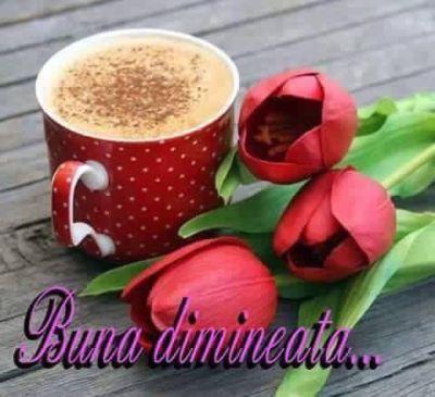 Ziua buna incepe cu o cafea buna