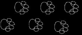 Pegadas de onça