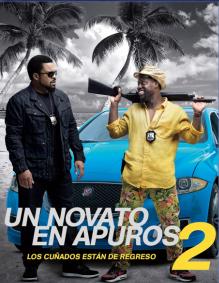 Un Novato en Apuros 2 en Español Latino