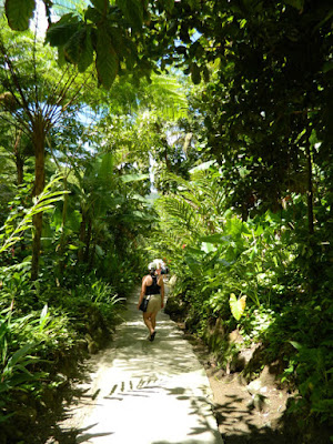 Diamond Botanical Gardens path Soufriere St. Lucia by garden muses-not another Toronto gardening blog