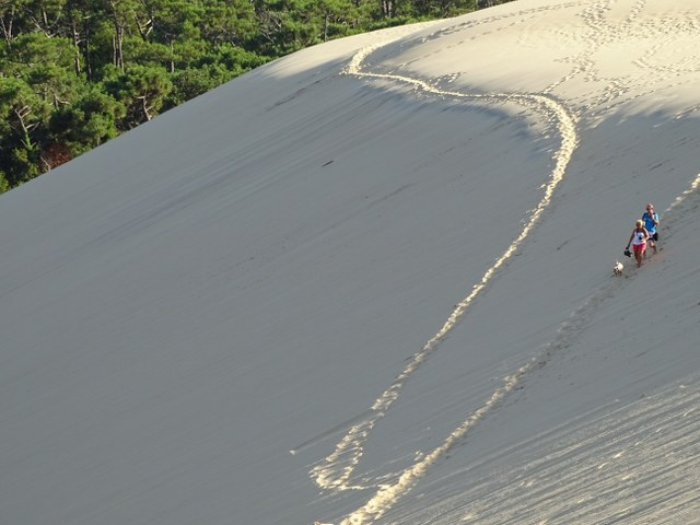 vista duna gran duna pilat arena francia france