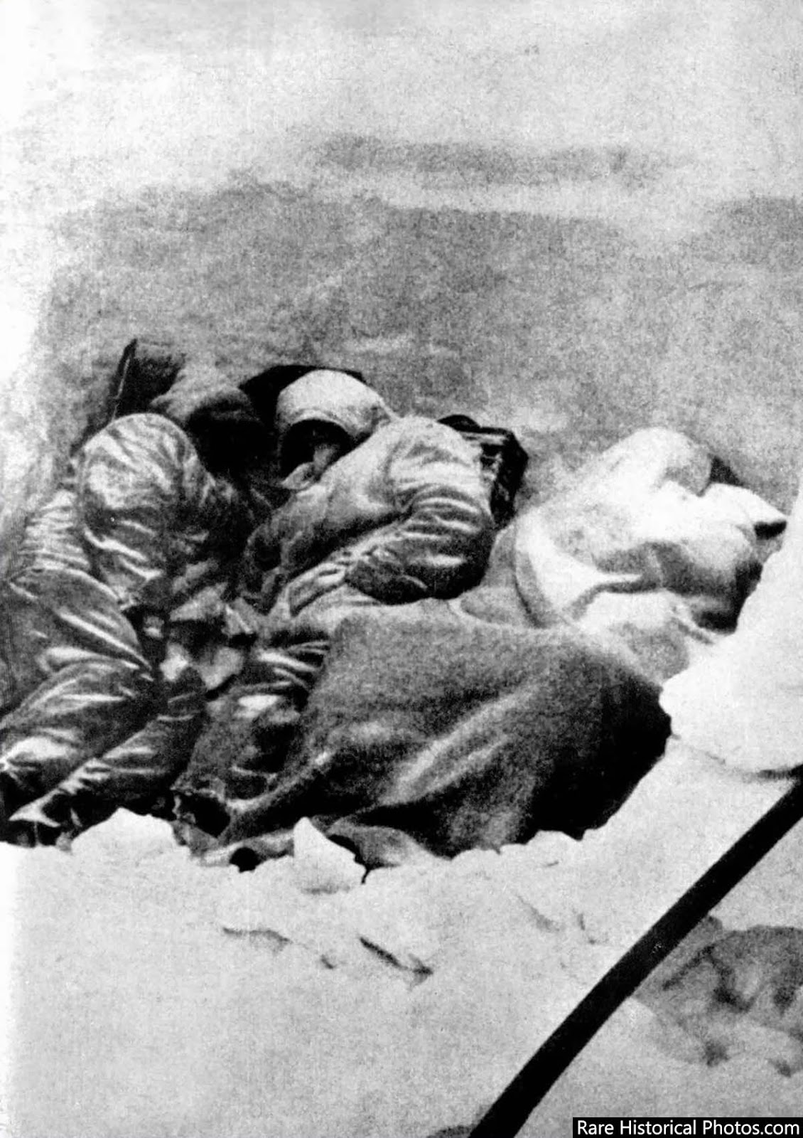 Dead frozen German soldiers in a trench at Stalingrad. February 1943.